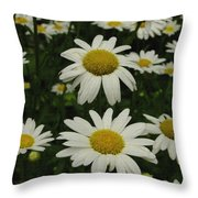 Patch Of Daisies Throw Pillow