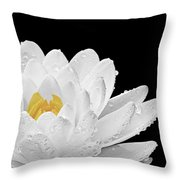 Patch Of Gold Throw Pillow
