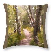 Path 1 Throw Pillow