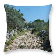 Path Among Olive Trees Throw Pillow
