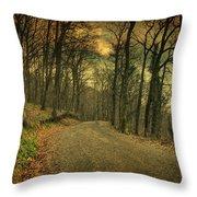 Path IIi Throw Pillow