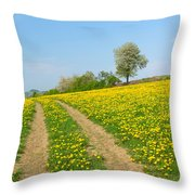 Path In Dandelion Meadow  Throw Pillow