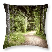 Path In Green Forest Throw Pillow by Elena Elisseeva