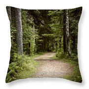 Path In Old Forest Throw Pillow