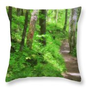 Path In The Forest Throw Pillow by Jill Lang
