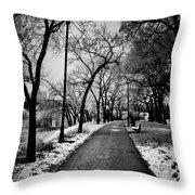 Path Me Bye  Throw Pillow