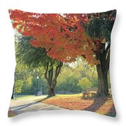 Path Of Change Throw Pillow