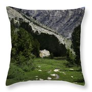 Path Of Life Ruby Mountains Stock Trail Throw Pillow