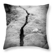 Path Taken Throw Pillow