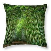 Path Through Bamboo Forest E139 Throw Pillow