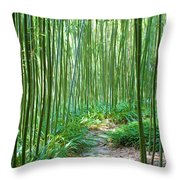 Path Through Bamboo Forest Throw Pillow