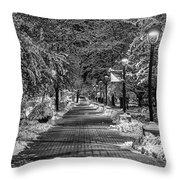 Path Through Eastern Throw Pillow