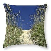 Path Through The Dunes Throw Pillow