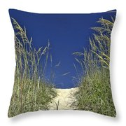 Path Through The Dunes Throw Pillow