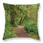 Path Through The Rainforest Throw Pillow