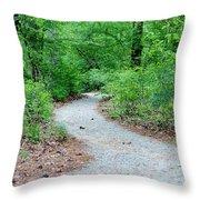 Path Through The Woods Throw Pillow