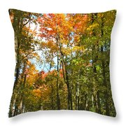Path Through The Woods Throw Pillow