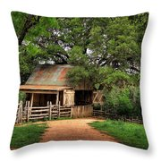 Path To The Barn Throw Pillow