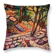 Path To The Cascades Throw Pillow