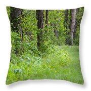 Path To The Green Forest Throw Pillow