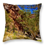 Path To The Gum Trees And Waterhole Throw Pillow