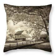 Path To The Old Barn Throw Pillow