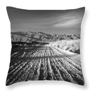 Path To The Point. Throw Pillow