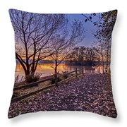 Path To The Serene Throw Pillow