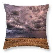 Path To The Storm Throw Pillow