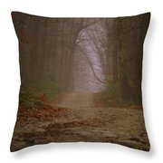Path To Wolf Den  Throw Pillow