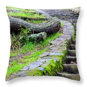 Paths Unlimited Throw Pillow