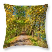 Pathway Along The Ohio And Erie Canal  Throw Pillow