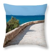 Pathway By The Sea Throw Pillow