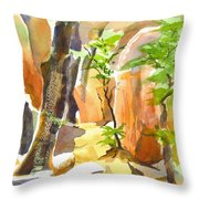 Pathway II Throw Pillow