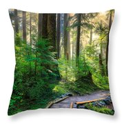 Pathway Into The Light Throw Pillow