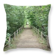 Pathway Through The Forest Throw Pillow