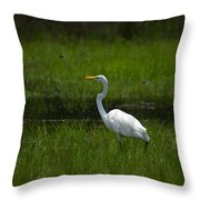 Patience - Egret Throw Pillow