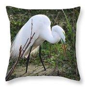Charleston Sc Snowy White Egret Throw Pillow by Ella Char