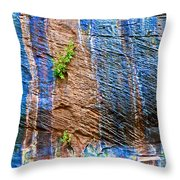 Pattern On Wet Canyon Wall From River Walk In Zion Canyon In Zion National Park-utah  Throw Pillow