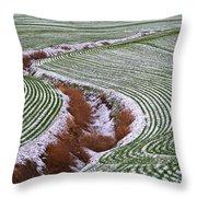 Patterns 2 Throw Pillow