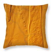 Patterns And Animal Tracks On Sand Throw Pillow