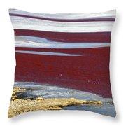 Patterns At Laguna Colorada Throw Pillow