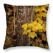 Patterns Of Fall Throw Pillow