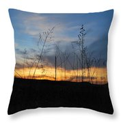 Patterson Hay  Throw Pillow