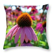 #paulzurawski Throw Pillow