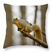 Pause Before Jump Throw Pillow