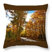 Paved With Gold Throw Pillow