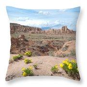Pawnee Buttes Colorado Throw Pillow