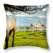 Payson Country Temple Oil Paint Texture Throw Pillow