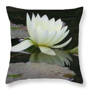 Peace And Enlightment Throw Pillow